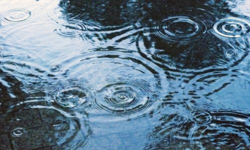 降雨時に雨漏りするようでは…